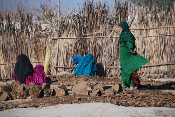 Cool pic of the day from Jbad 4 Feb 10.  Local Kuchi women in a IDP camp making cow paddies.  They sell the dried paddies by the sack load and it is normally used to cook nan (bread) because it burns hot and adds flavor.  Sounds gross but hot out of the oven nan is delicious